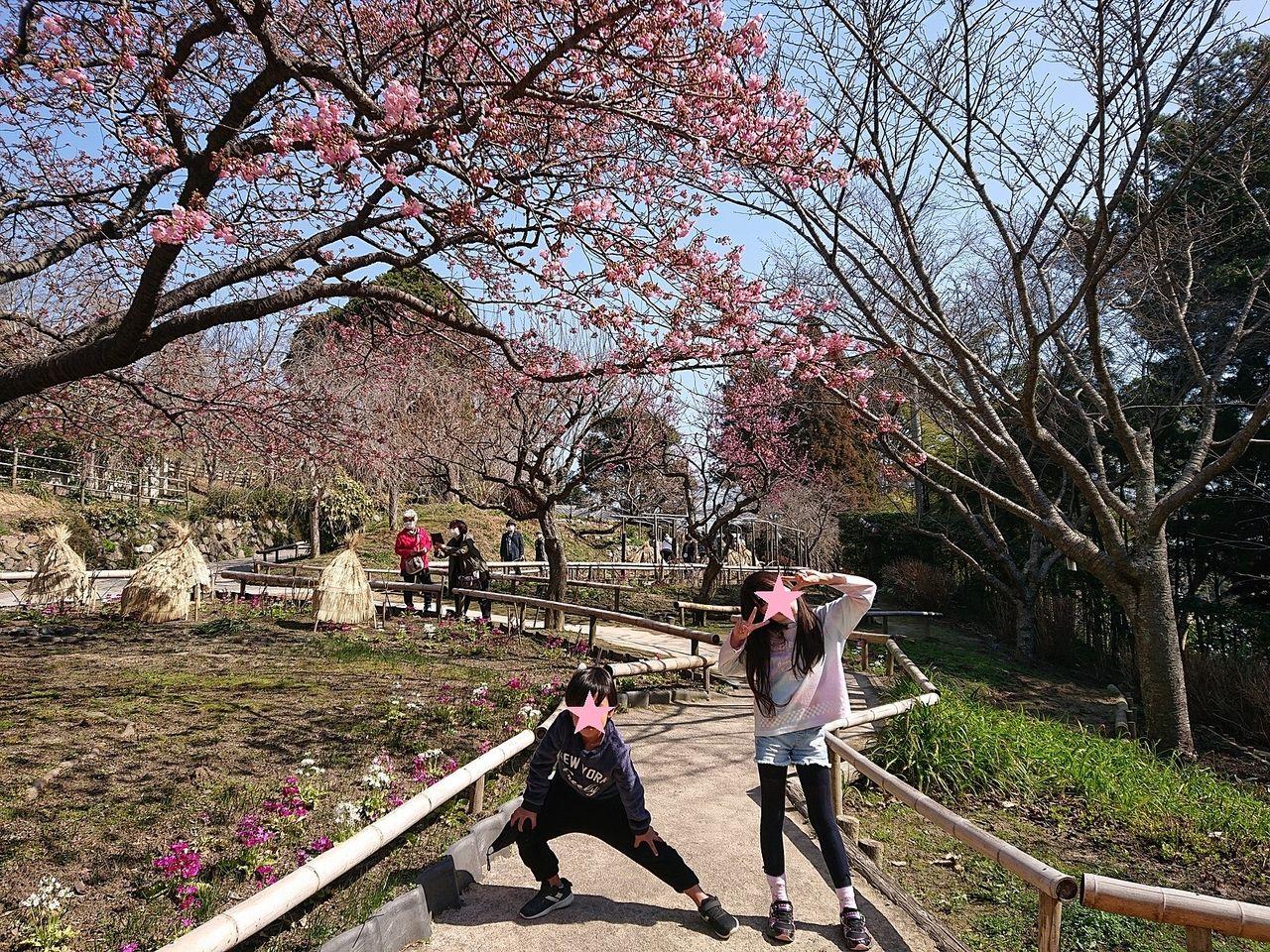 四季折々の木々を楽しめます(^^)/